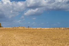 Field and a cloudy sky, Malta Stock Images