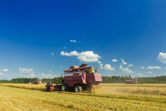 Field combine harvester elevator to upload cereal into tractor Stock Photo