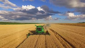 Field, combines and sky stock footage