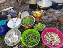 Field cooking- edible plants in bowels and  puts on the fire. On the ground Stock Photos
