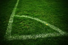 Field corner of outdoor football playground, green natural grass turfs Stock Images