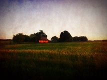 Field in the country Stock Images