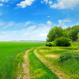 Field, country road and  blue sky Royalty Free Stock Photos