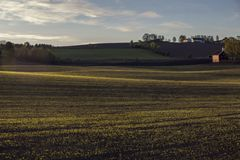 A field in the countryside royalty free stock photo