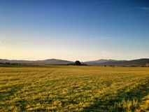 Field. In Croatia Royalty Free Stock Photography