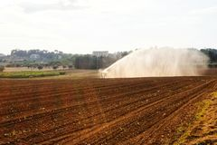 Field cultivated during watering. Day stock photo