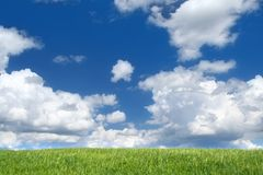 Field with cumulus clouds Stock Images