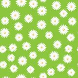 Field of daisies. Green field of daisies. seamless pattern. eps 10 Stock Photos