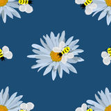 Field of daisies. seamless pattern. Field of beautiful daisies and bees. seamless pattern Stock Photo