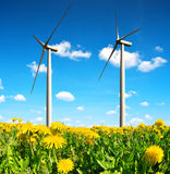 Field of dandelions with wind turbines. Royalty Free Stock Photos