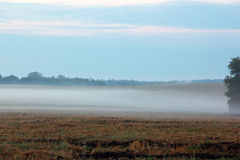 Field with a dense fog and sky Stock Images