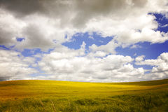 Field with dramatic sky. Stock Images