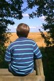 Field of dreams royalty free stock photos