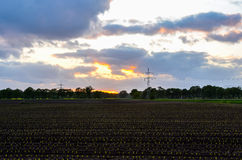 Field at dusk Royalty Free Stock Images