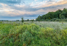 Field and edge of the forest at evening. Early autumn Stock Photo