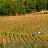 Field engine in the vineyard Royalty Free Stock Images