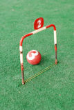 Croquet game Royalty Free Stock Photo