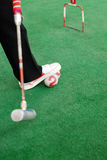 Croquet game. A field exercise croquet game Royalty Free Stock Photography