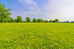 Field beside of ezu lake Stock Photography