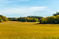 Field in fall Stock Photography