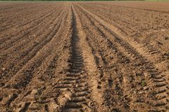 A field on farmland royalty free stock images