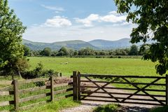 Lake District field. royalty free stock images