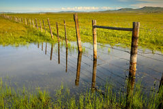 Field fence reflecting in Irrigation water Royalty Free Stock Photos