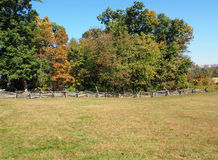 Field and fence by trees Stock Image