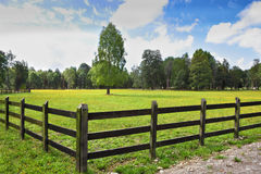 The field fenced with low strong fence Royalty Free Stock Photo