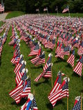 Field of Flags Royalty Free Stock Images