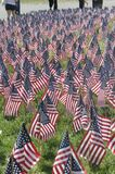 U.S. Flags on Boston Common in preparation for Memorial day stock photo