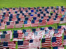 Field of Flags Royalty Free Stock Photo