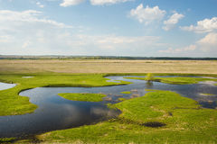 Field flooded with water Royalty Free Stock Images