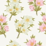 Field flover pattern 4. Flower seamless pattern. Floral vintage colorful background for you scrapbook and design Stock Photo