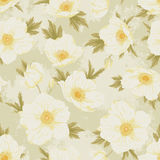 Field flover pattern 1. Flower seamless pattern. Floral vintage shabby chic background for you scrapbook and design Stock Photos