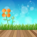 Field of flower fresh spring on blue background with plank wood Stock Images
