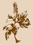 Field flower silhouette. On brown background, vector illustration Royalty Free Stock Images