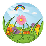 Field of flowers. Vector illustration Royalty Free Stock Photography