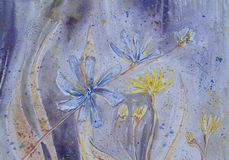 Field flowers. Hand painted field flowers in watercolor Stock Photo