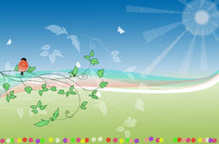 Field with flowers,bird  and butterfly. Field illustration with robin,butterfly and flowers Stock Photography