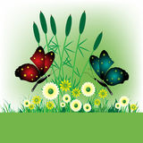 Field with flowers and butterflies. Colorful background with field flowers, reed and two butterflies. Spring concept Stock Image