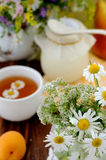 Field flowers and chamomile tea (background) Stock Image