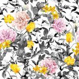 Field flowers, grasses, herbs. Seamless summer pattern, black and white colors. Watercolor. Field flowers, grasses, herbs. Seamless summer pattern in black and Stock Image