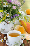 Field flowers and herbal tea (background) Royalty Free Stock Photography