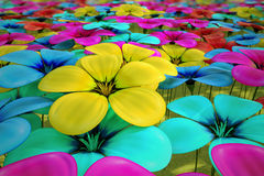 Field of flowers. Stock Images