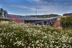Field flowers in meadow near unfinished steel highway bridge. Royalty Free Stock Photography