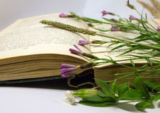 A field flowers on an open book. Still life with an open book of Honore de Balzac. Royalty Free Stock Photo