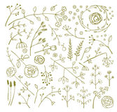 Field Flowers and Plants Decoration Collection. Flowers leaves and grass set for design illustration. Vector EPS10 Stock Photography