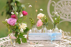 Field Flowers and Roses Royalty Free Stock Image