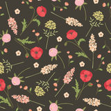 Field flowers seamless pattern. Field flowers seamless vector pattern. Vintage style pattern for fabric printing, wrapping paper, wallpaper, background Royalty Free Stock Photography